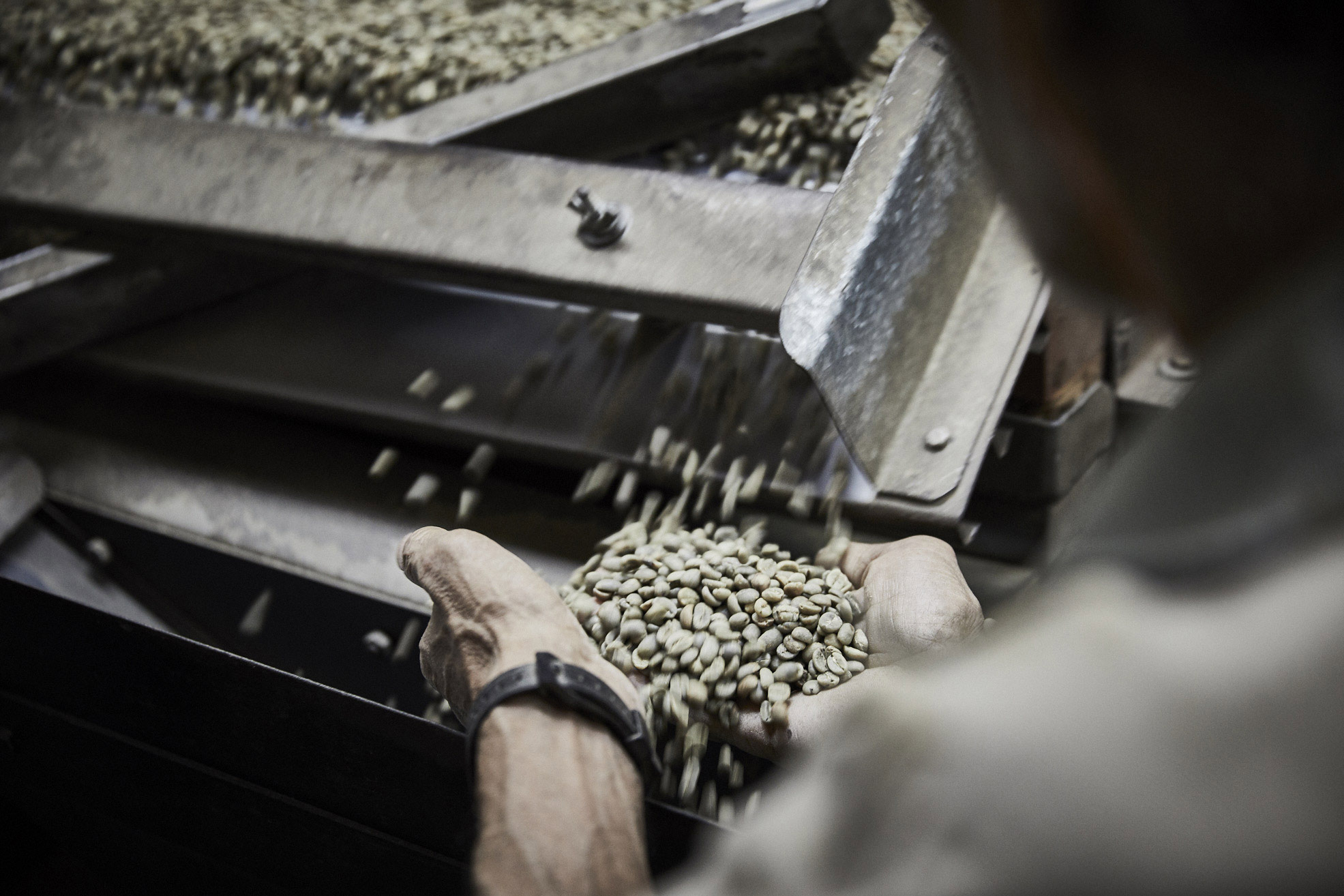 Parks-Coffee_Laumayer-Dry-Mill-Workers_038
