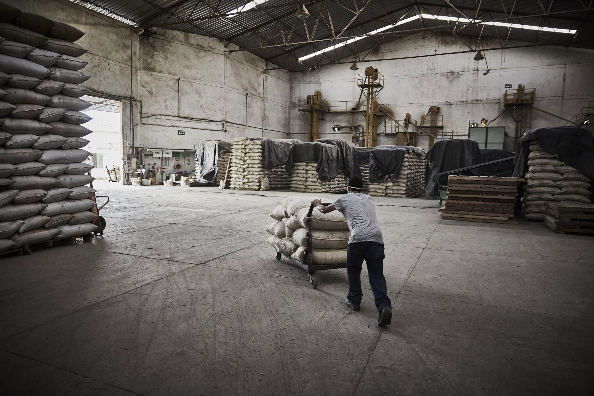Parks-Coffee_Laumayer-Dry-Mill-Workers_229